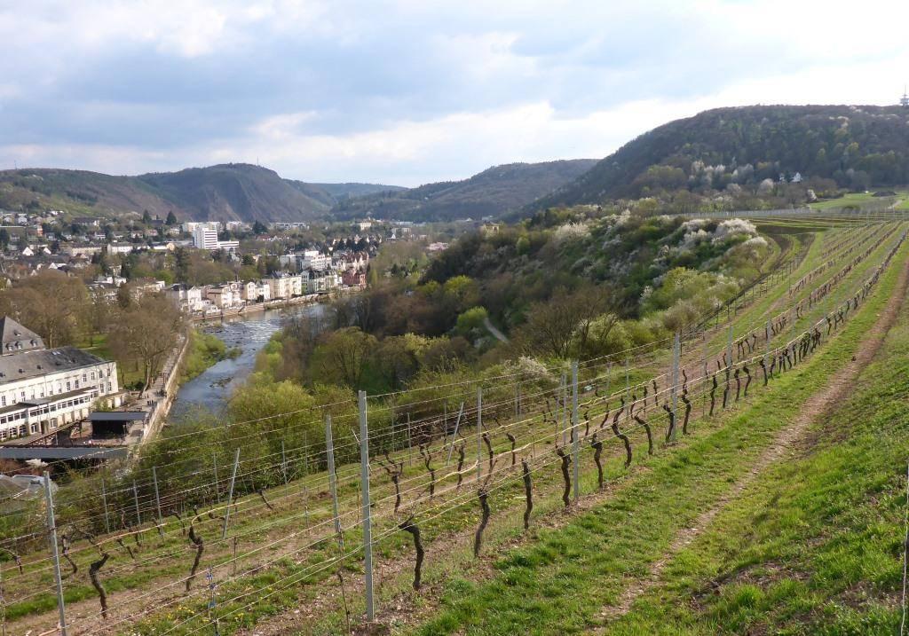 Immobiliensuche Makler Rheinhessen, Naheland, PLZ 55
