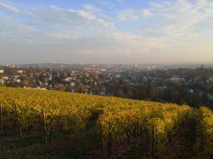 Gutachter Vorschau: Hauskauf Bad Homburg