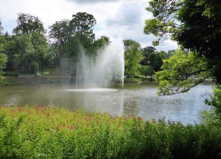 Gutachter sucht Immobilien in Wiesbaden und Vororten