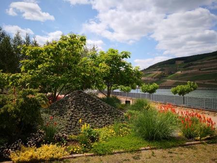 Garten am Rhein